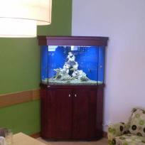 Aquariums-(22).jpg