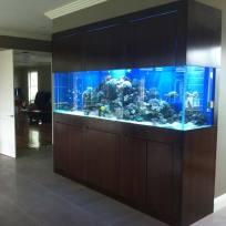 Aquariums-(32).jpg