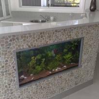 Aquariums-(33).jpg