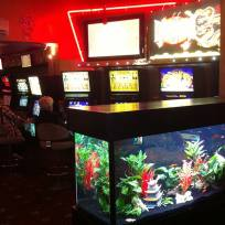 Aquariums-(39).jpg