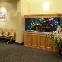 Aquariums-(28).jpg