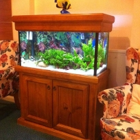 Aquariums-(3).jpg