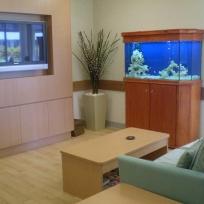 Aquariums-(37).jpg