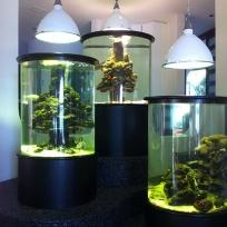 Aquariums-(40).jpg