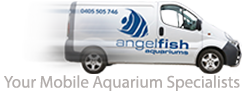 Your Mobile Aquarium Specialists